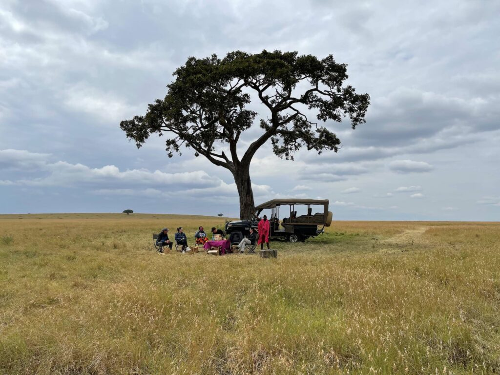 Metamo safari truck and group of tourists and locals under a large tree in a field.